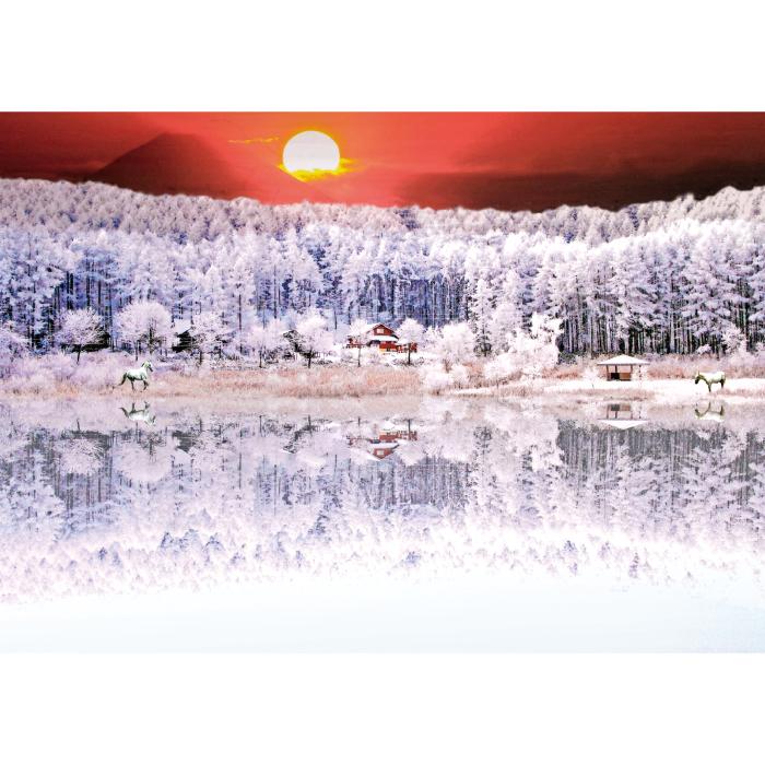 お風呂ポスター 夕日と白樹 B1(103×72.8cm) 長期固定タイプ(吸着素材)