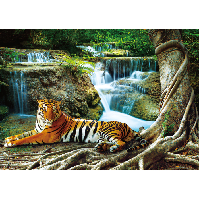 お風呂ポスター 休息中のトラ B1(103×72.8cm) 長期固定タイプ(吸着素材)