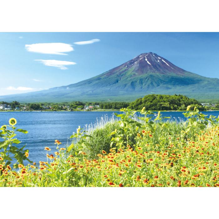 お風呂ポスター 河口湖畔の花と富士山 B1(103×72.8cm) 短期貼替タイプ(水貼素材)