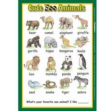 【幼児・小学生・中学生にオススメ 英語教材】キュート・ズー・アニマルズ ポスター Cute Zoo Animals