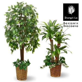 光触媒 インテリアグリーン 2本セット 人工観葉植物 インテリアベンジャミン 幸福の木 ドラセナ フェイクグリーン オフィス 造花 オフィス グリーン 観葉植物 大型 人工植物