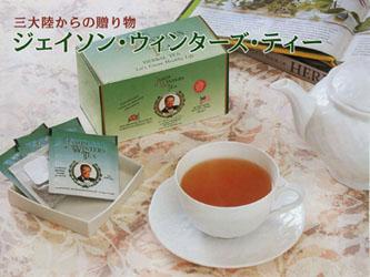 【送料無料】日本正規販売品ジェイソンウィンターズティー30個ティーバッグ入2個セット:【fsp2124】02P03Dec16
