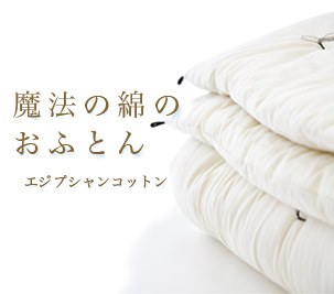魔法の綿のおふとん(ダブル 190×210 /側生地 エジプシャン/冬用 2.5kg) 日本製 岩本繊維 【 送料無料 】【受注生産】