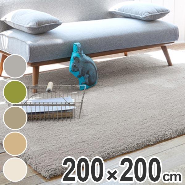 ラグ マイクロファイバー 200x200cm ( 送料無料 ラグマット 絨毯 センターラグ リビング じゅうたん ホットカーペット対応 寝室 インテリア 敷物 マット )