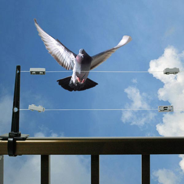 手すりにテグスを張って鳥の侵入阻止 バードストッパー 日本産 飛来防止柵 いつでも送料無料 鳥害対策 ハットラップ