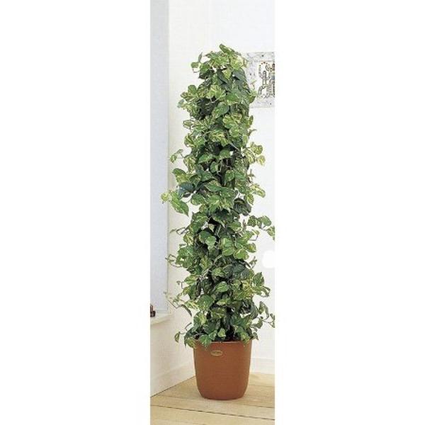 人工観葉植物 ピュアメイト ポトスポール 180cm 送料無料( 光触媒 消臭 インテリア 大型 )