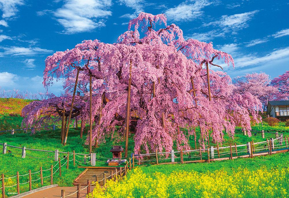 ジグソーパズル 300Pジグソーパズル 本日限定 満開の三春滝桜 38×26cm ビバリー バーゲンセール 33-165