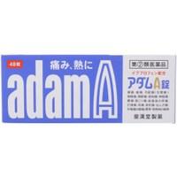2020新作 アダムA錠 48錠 解熱鎮痛剤 錠剤 正規激安 48錠アダムA錠 類医薬品 2 第