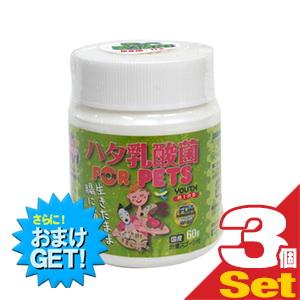 (さらに選べるおまけGET)(ペット用食品)LCH ハタ乳酸菌 for PET 2g×30包入×3個セット(計90包) - 生きたまま凍結乾燥加工。犬・猫の健康をサポート【smtb-s】