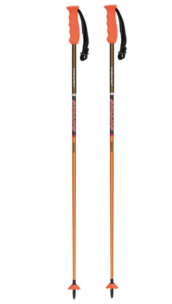 GS競技専用ポール sinano skiing pole [CK-GS @30780]シナノ スキーポール 【送料無料】
