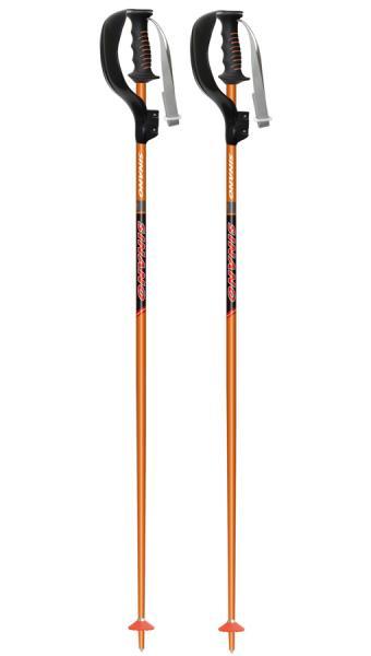 お手頃価格 sinano SL-16 skiing pole [ SL-16 ボーグ付 @11880 ] シナノ【 [ スキーポール 2本組【 スキー 用】【正規代理店商品】, BEEF:724f612a --- phcontabil.com.br