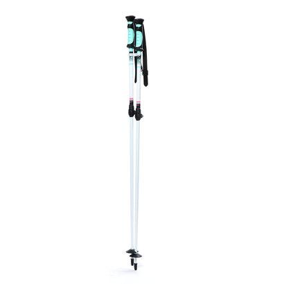 ハート Hart レディース スキー ポール イノセンスAJS 5223201928