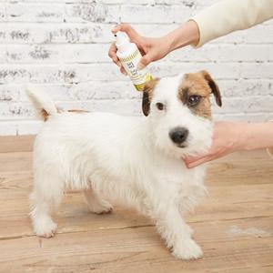 APDC(エーピーディーシー) ニーム&シトロネラスプレー 犬用 125ml