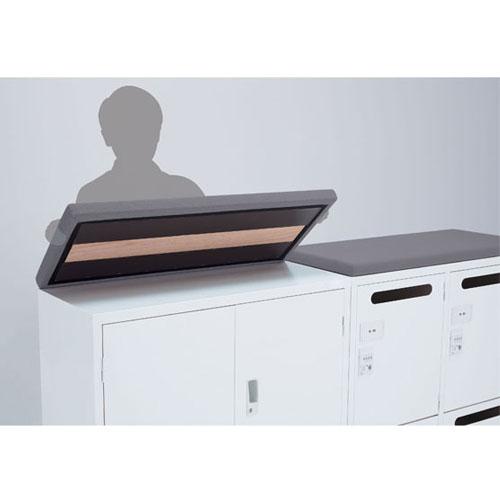 クッション天板 布張り スチール書庫 SALZ用 ALZ-CF