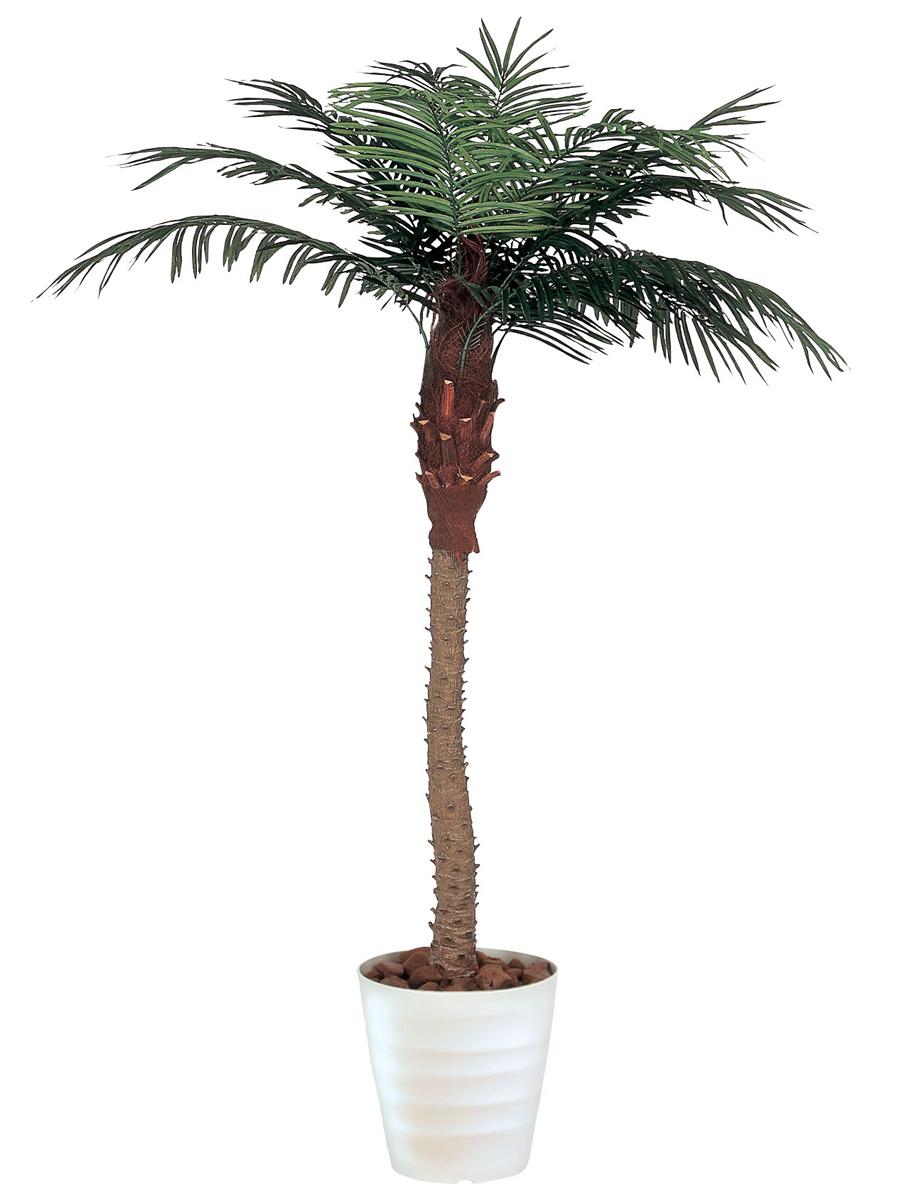 ★送料無料★フェニックス 観葉植物 210cm 人工樹 防汚 A3601-500