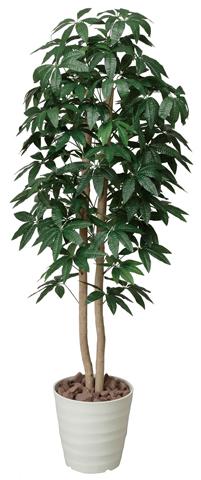 ★送料無料★ パキラ 観葉植物 160cm 観賞用 フロア 飾り C3901-250