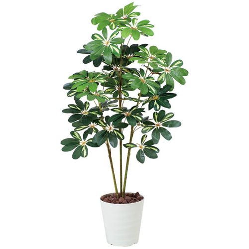 カポック 斑入 H120cm 鉢植え 造花 送料無料 3A4608-180