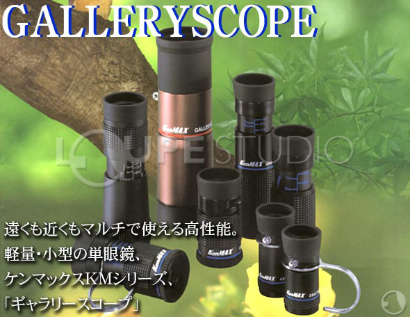 Gallery Scope with light stand 20X