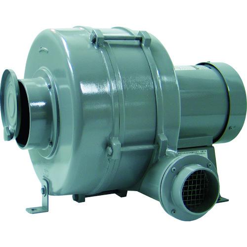 淀川電機 [HB3] 多段ターボ型電動送風機 HB3 [HB3] HB3 販売単位:1 販売単位:1 運賃別途, 相馬村:9c8b0cbd --- sunward.msk.ru