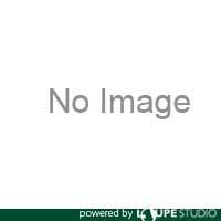 【超安い】 TACドリル タンガロイ   送料無料:ルーペスタジオ [TDX390F40-5] TDX390F405 販売単位:1-DIY・工具