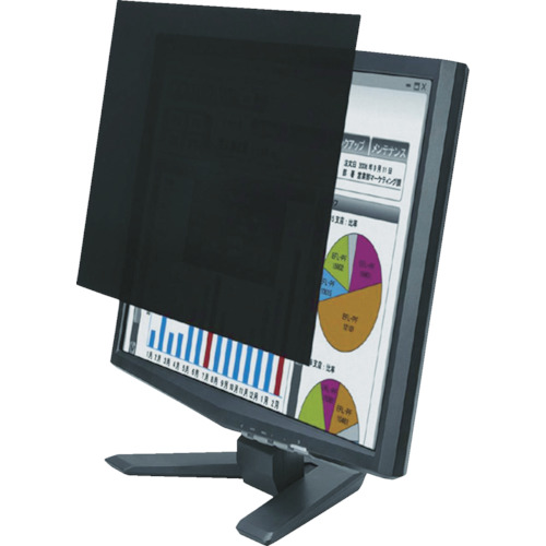 エレコム 液晶保護フィルター/覗き見防止/19(16:10)インチ [EF-PFS19W] EFPFS19W 販売単位:1 送料無料