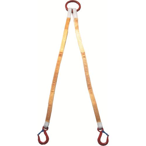 大洋 2本吊 インカリフティングスリング 1t用×1m [2ILS 1TX1] 2ILS1TX1 販売単位:1 送料無料