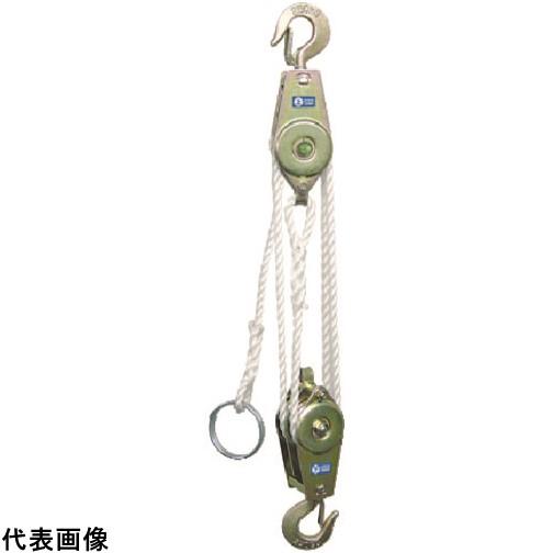 HHH ロープホイスト 250kg 揚程3m RH250 販売単位:1 送料無料
