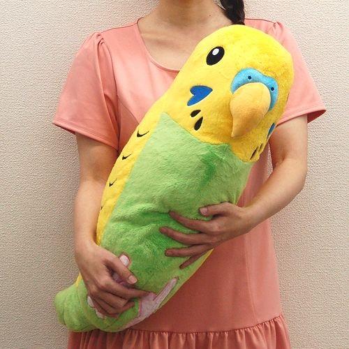 小鳥の販売ペットショップアイランド
