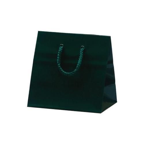リトルバッグ 手提袋 165×90×160mm 100枚 ダークグリーン 1045