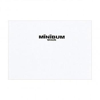 海外 スリップケース付きのコンパクトなA5アルバム ナカバヤシ ミニバム アE-MB-112-W ブラックシリーズA5サイズ ホワイト 発売モデル