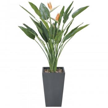 最安値に挑戦 光触媒加工をしてあります 同梱 代引き不可 光の楽園 ストレチア1.6m 光触媒加工 激安通販 人工観葉植物 115E900-27