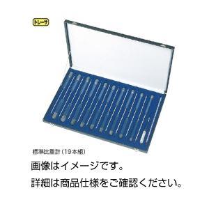 (まとめ)標準比重計(19本組)単体 大型No10のみ【×3セット】