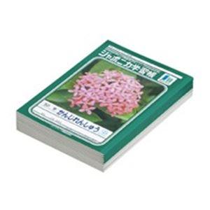 (業務用30セット) ショウワノート 漢字練習 JL-48 50字 10冊