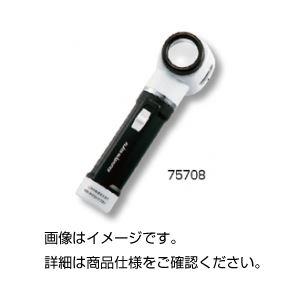 (まとめ)ライト付スケールルーペ75708【×3セット】