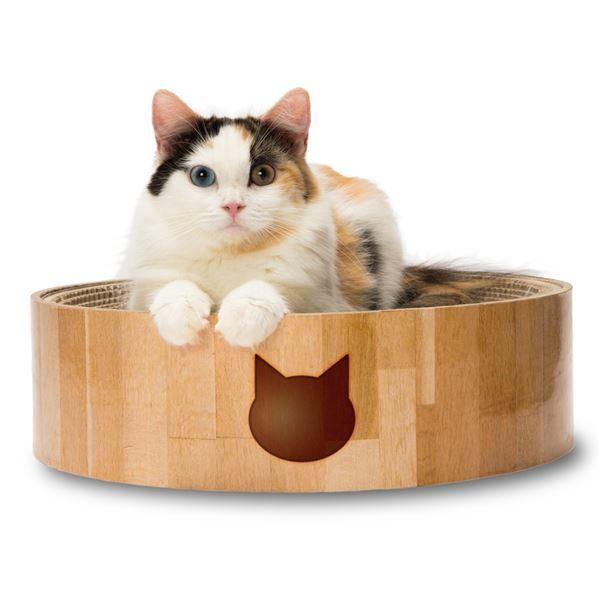 (まとめ)猫壱 バリバリボウル 猫柄(ペット用品)【×5セット】