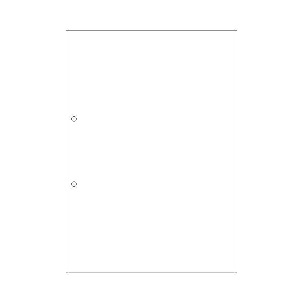 ヒサゴマルチプリンタ帳票(FSC森林認証紙) A4 白紙 2穴 FSC2001Z 1箱(1200枚)