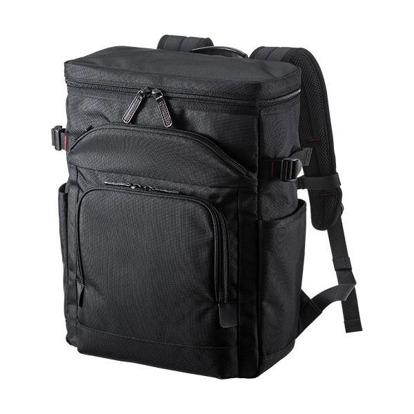 サンワサプライエグゼクティブビジネスリュック 13.3型ワイド対応 ブラック BAG-EXE10 1個