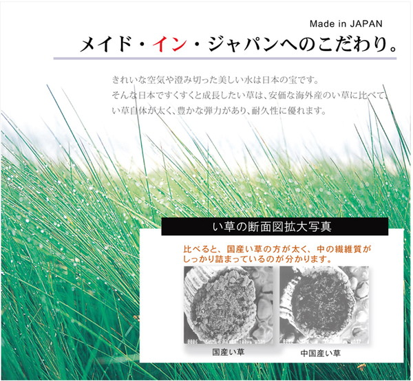 純国産 い草ラグカーペット 格子柄シンプルモダン ブルー 約191×250cmXuiZkOPT