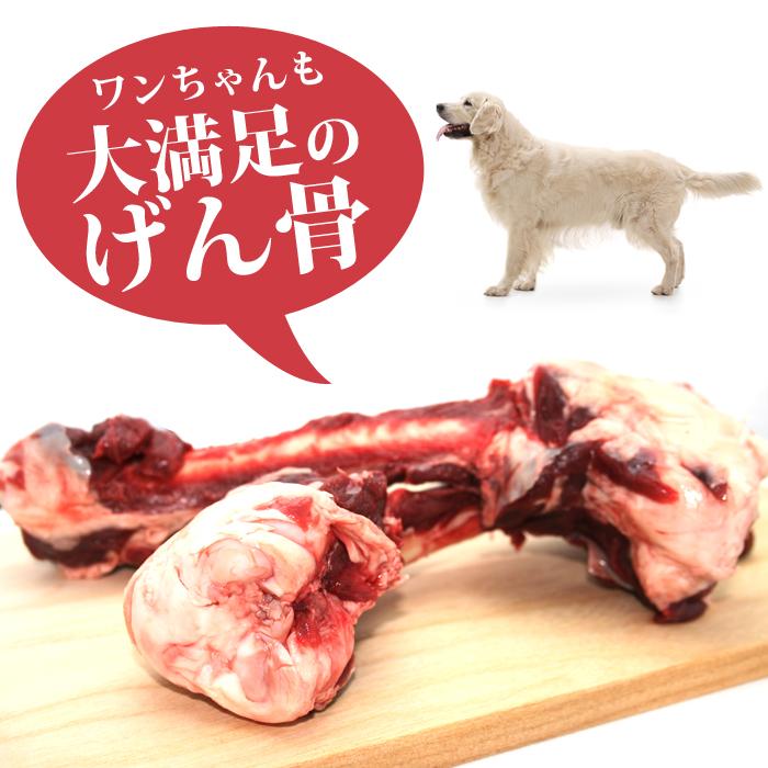犬用 エゾ鹿 げん骨4個(愛犬のおやつに)[工場直販:北海道エゾ鹿使用]