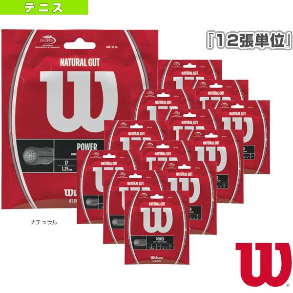 『12張単位』WILSON ウィルソン/NATURAL GUT(WRZ999800/WRZ999900)《ウィルソン テニス ストリング(単張)》ガットナチュラル