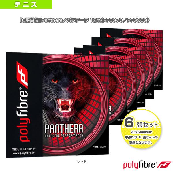 『6張単位』Panthera/パンテーラ 12m(PF0970/PF0960)《ポリファイバー テニス ストリング(単張)》(ポリエステル)ガット