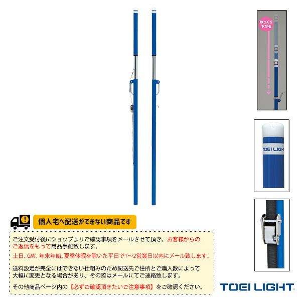 [送料別途]ソフトバレー・バドBT(検)/2本1組(B-2748)《TOEI(トーエイ) バドミントン コート用品》