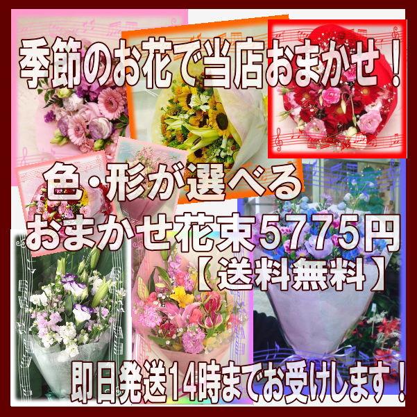【ポイント】【おまかせ】【MIX】店長おまかせ!色を選んで!季節のお花でおまかせ花束5775円【送料無料】【あす楽対応_関東】