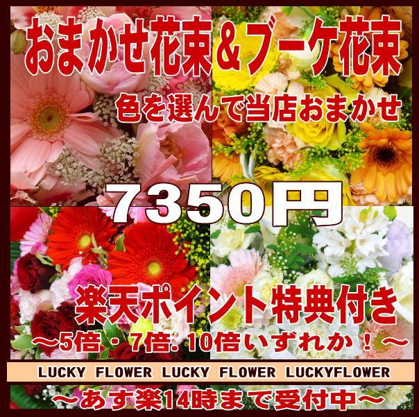 【ポイント】【MIX】【おまかせ】特別価格の季節のお花で当店おまかせ!色を選んで!7350円コース・誕生日・記念日に特別なGIFTを!豪華花束!【送料無料】【smtb-TD】【saitama】【御祝・開店】