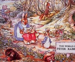 彼得Rabbit PO系列西柚匙子PO單物品(katorari、日本製造)[a]