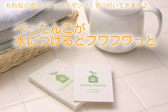 I am belonging to NEW box! North Europe sponge wipe is available! Popup sponge set (Frosch) gift, wedding present, baby gift, family celebration, housewarming dishcloth gift 10P10Nov1310P_0215
