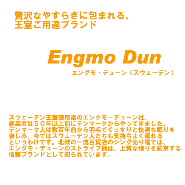 Light and warm ♪ Engmo Dun エングモ dune down socks blue ( feather ) gift, room shoes gifts cool measures moving celebration Grand opening celebration Christmas 10P18Oct13