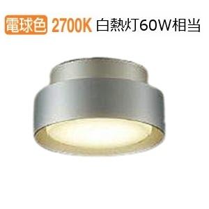 大光電機LED屋外シーリングDWP37636