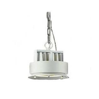 大光電機LEDペンダント本体 LZP60801AW