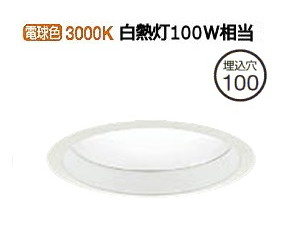 大光電機LEDアウトドアライト軒下用LZW91500YW